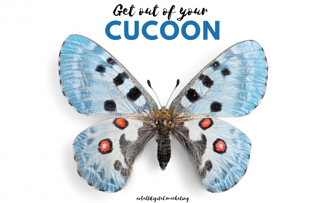 Get Out Of Your Cocoon: Turn Your Business Into A Social Butterfly!